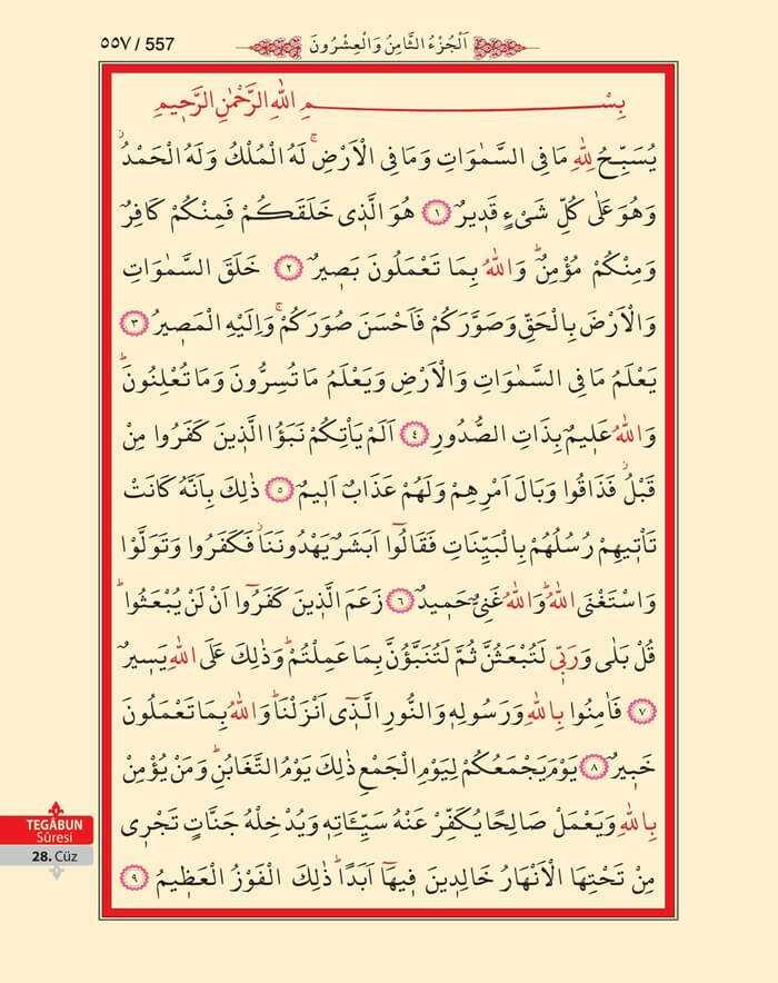 Tegabun Suresi - 555.Sayfa - 28. Cüzün 3. Hizbi